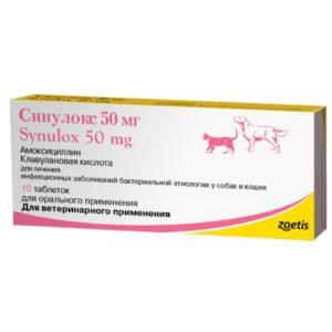 использовать антибиотики для кошек при простуде и инфекциях