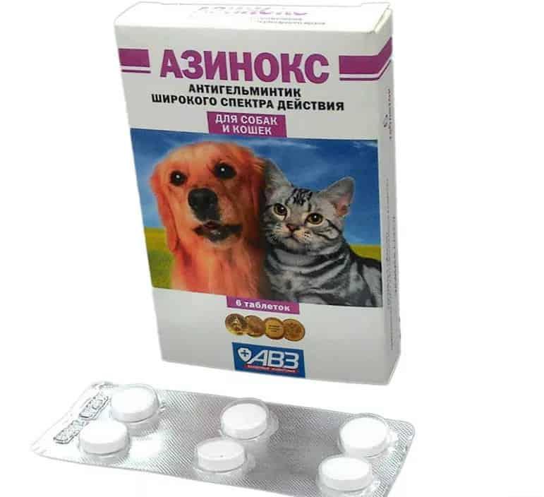 таблетки от глистов и паразитов у человека