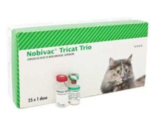 Как применять вакцину Нобивак Трикет для кошек