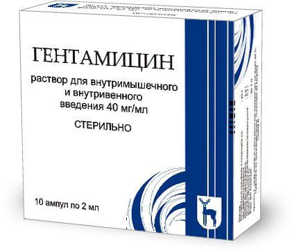 Антибиотики для кота при инфекции