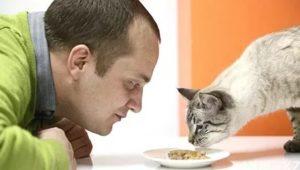 Можно ли есть кошачий корм человеку и если нет, то почему