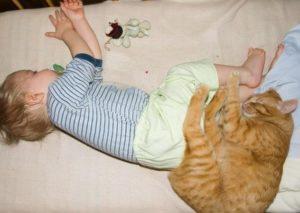 Кошачий сон с детьми