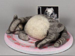 лечение вирусного перитонита у кошек