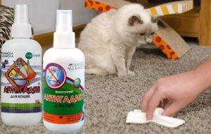 Как можно сделать Антигадин для кошек своими руками