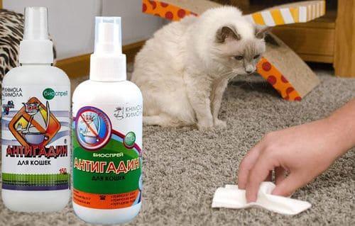 Сделать антигадин для кошек