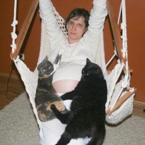 Чувствуют ли кошки беременность хозяйки